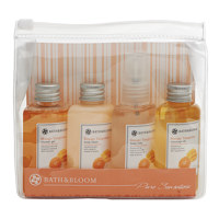 Pure Mango Tangerine Bag Set