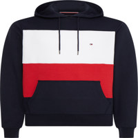 COLORBLOCK HOODY